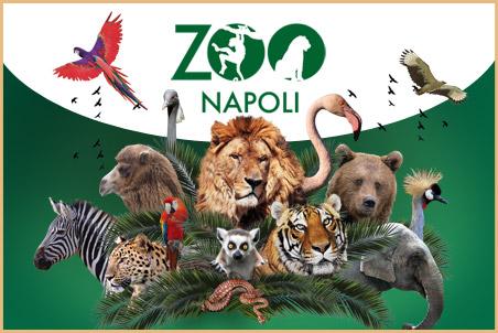 Zoo Napoli